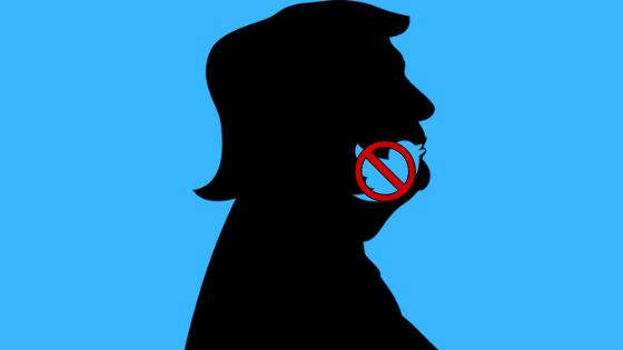 Trump deplatforming polarizzazione